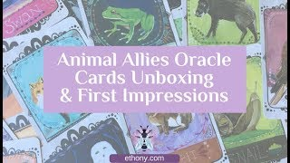 Animal Allies Oracle Cards Unboxing and First Impressions