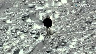 Survived An Avalanche | Bear Grylls Extreme Survival Caught On Camera