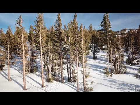 Reno, NV Area Drone Footage