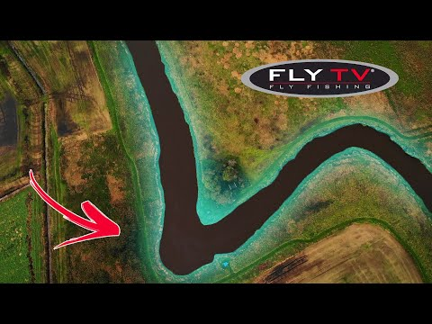 FLY TV - Small River Salmon In Denmark (double Handed Fly Fishing)