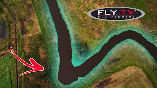 FLY TV  Small River Salmon in Denmark (double handed fly fishing)