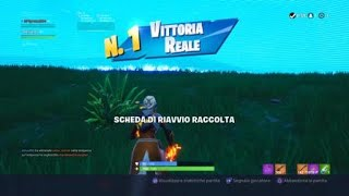 Fortnite REAL Victory WITH DELUX985