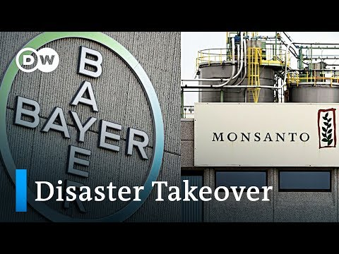 Bayer's Acquisition Of Monsanto Is Becoming A Disaster | DW News