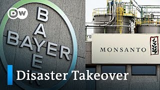 Bayer's acquisition of Monsanto is becoming a disaster