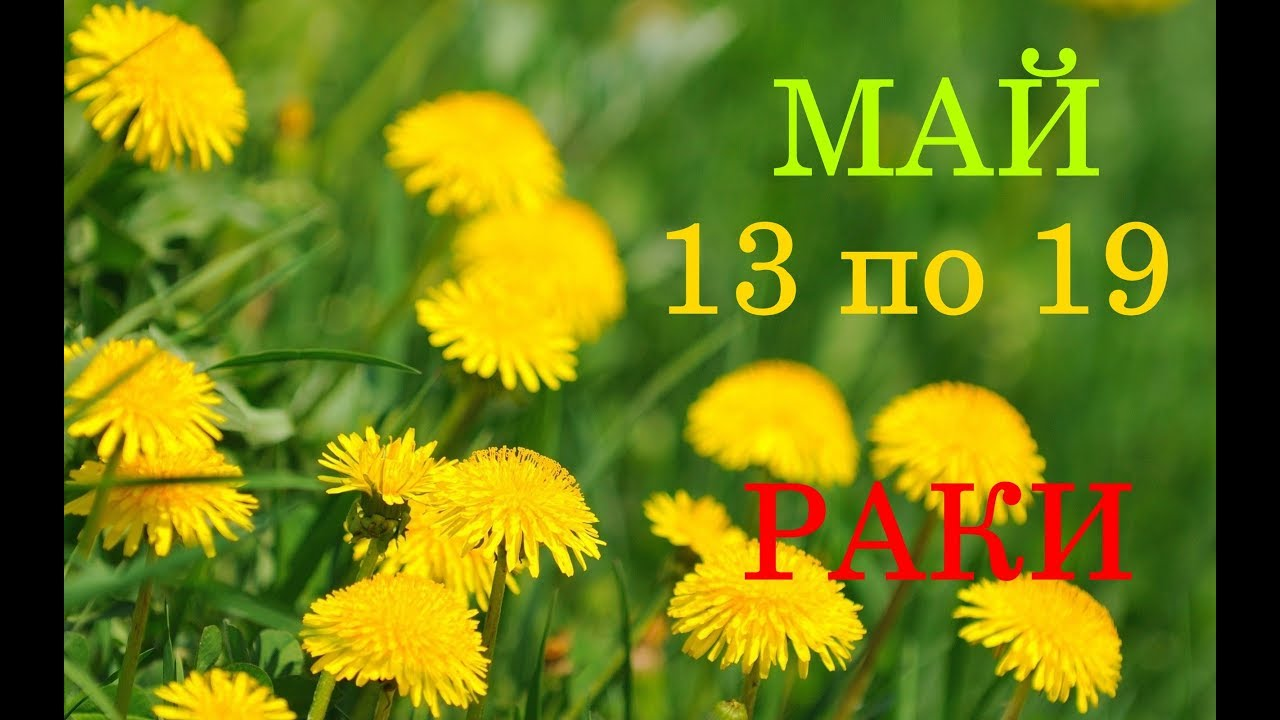 РАКИ. ГОРОСКОП-ТАРО на НЕДЕЛЮ с 13 по 19 МАЯ 2019 год.