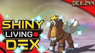 FINALLY! SHINY ENTEI! Quest For Shiny Living Dex #244  | Pokemon Alpha Sapphire