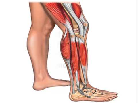 Foot Pain Natural Home Remedies How To Stop Shin Splints Forever