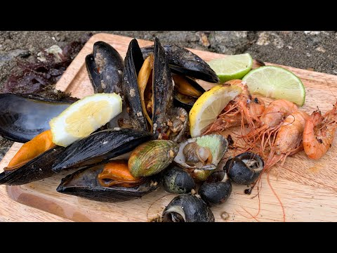 Coastal Foraging - Shellfish Beach Cook Up