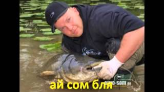 Korn Blind русский Misheard Lyrics