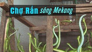 Chợ rắn đồng biên giới Việt Nam - Campuchia