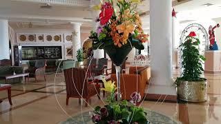 Charmillion Club Resort 5 Египет СчастливоеПутешествие Обзор отеля