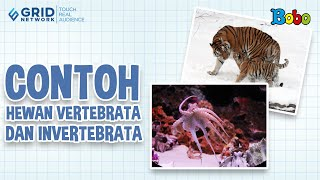 Tematik Kelas 5 - Tema 1 - Subtema 1 - Pembelajaran 5 - Contoh Hewan Vertebrata dan Invertebrata