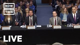 Google, Facebook, and Twitter Testify Before U.S. Senate on Online Violence | NowThis