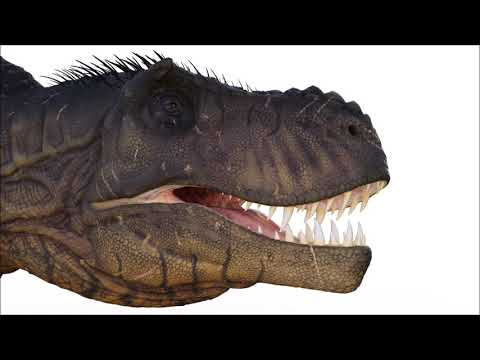 Scientist Recreated Sounds of the Tyrannosaurus Rex!