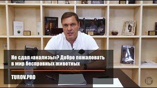 видео Проблема НДС 20