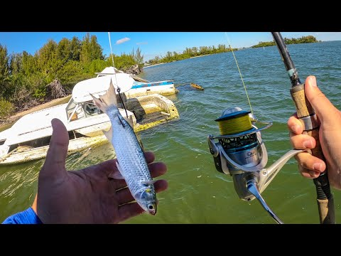Fishing Abandoned Saltwater Islands With Live Bait