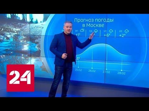 """Погода 24"": циклон ""Эллен"" вернул зиму - Россия 24"