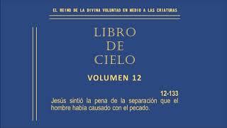 VOLUMEN 12 [133]