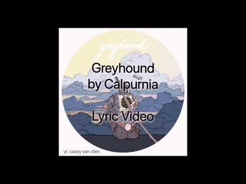 Greyhound by Calpurnia Lyric Video