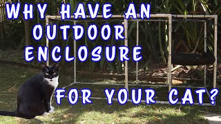 Why have an outdoor cat enclosure?