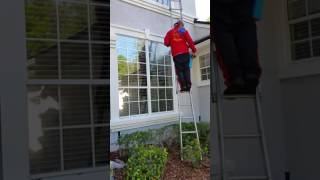 Good tips on how to clean windows like a professional