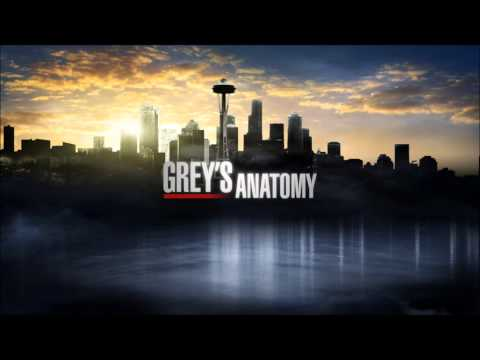 Grey's Anatomy Soundtrack: The Swell Season - In These Arms