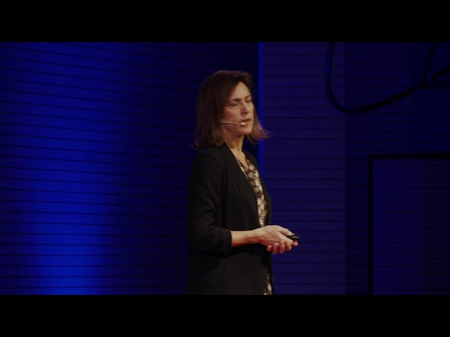 Landscapes of climate change: Overscapes and Underscapes | Peggy Weil | TEDxCesena