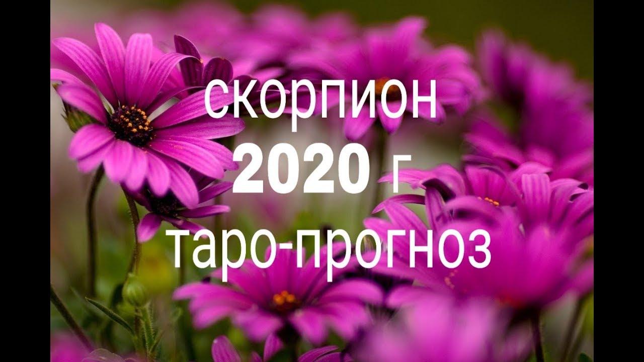 СКОРПИОН 2020 ГОД ТАРО-ПРОГНОЗ ГАДАНИЕ ОНЛАЙН