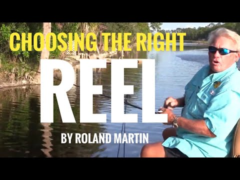 What Reel Speed Do You Need