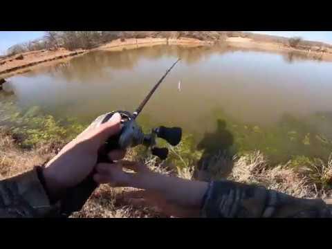 Bass Fishing In An Oklahoma Farm Pond