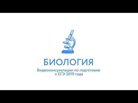 ЕГЭ-2019. Биология