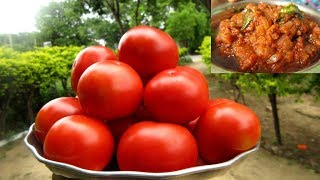 Tomato Chutney Recipe | Cooking in my Village | VILLAGE FOOD