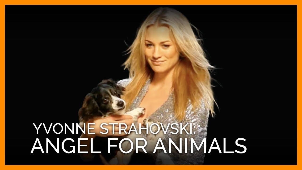 Watch Angel Yvonne video
