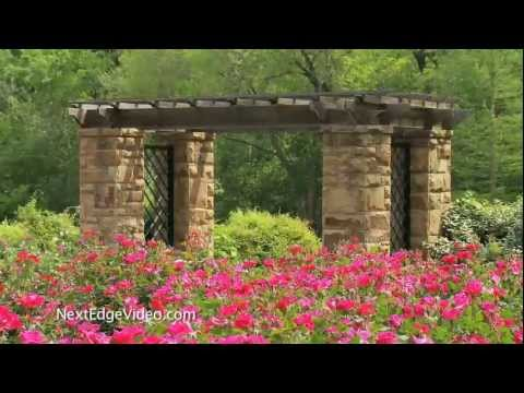 A Tribute to Betty - Fort Worth Botanic Garden