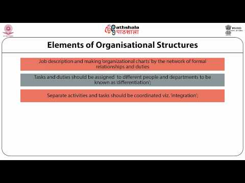 Organisational structure of the library