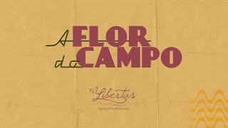 A Erva do Campo | 27/09/20