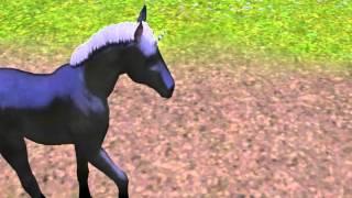 Les Sims 3 - Les Premiers pas de mon poulain licorne