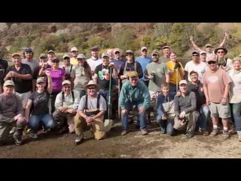 Putah Creek Trout   History And Heritage