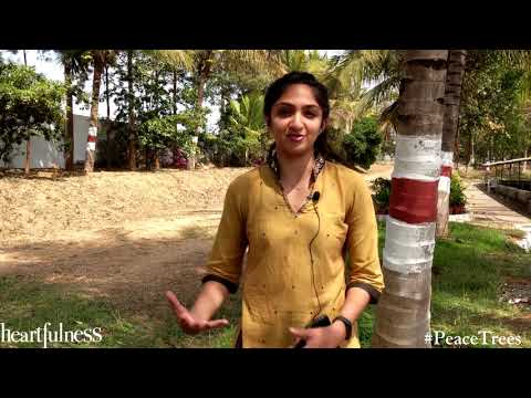 Protect Trees This Holi - Say No To Chemicals- Sandhya Krishnan