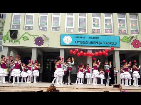 Arifpasa i.ö.o 1\C sinifi 23 Nisan Gösterisi Burak Efe Çataltepe