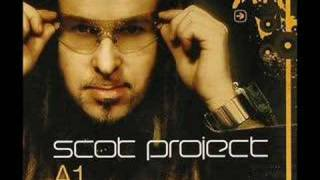 do ya wanna get hi - dj scot project