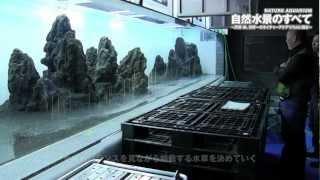 東京スカイツリータウン®内のすみだ水族館に展示される巨大ネイチャーア...