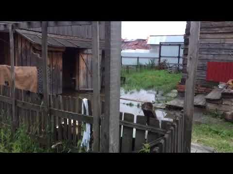 Затопленные участки в Ленинском районе Новосибирска
