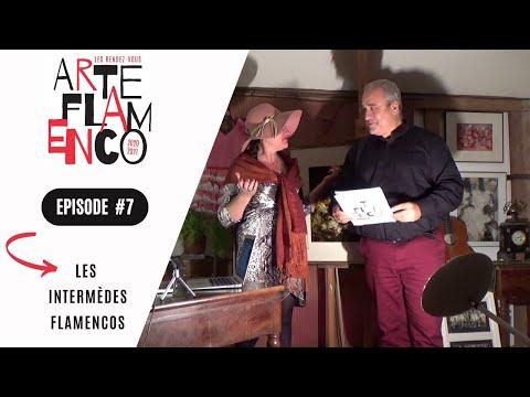 [ Épisode 7 ] Les Rendez-vous Arte Flamenco, c'est aussi des Intermèdes flamencos