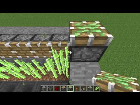 Как в майнкрафте сделать ферму тростника