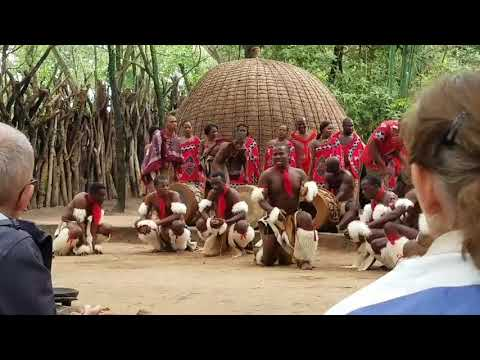 swaziland performance