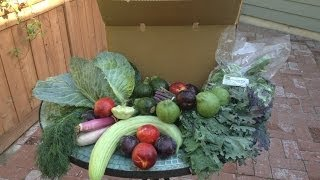 Local Farm Box: Organic Produce Unboxing Thumbnail