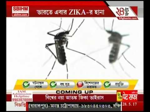 WHO reports first 3 cases of Zika virus in Ahmadabad