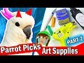 HE'S EVIL! MY PARROT PICKS MY ART CRAFT SUPPLIES Challenge #2