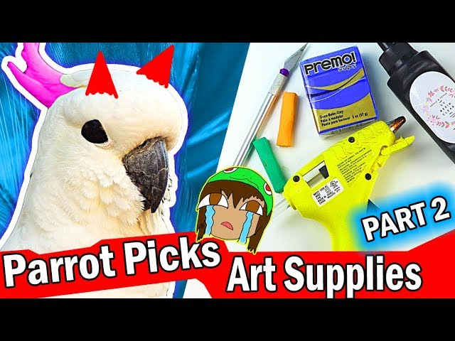 my-parrot-picks-my-art-craft-supplies-challenge-2